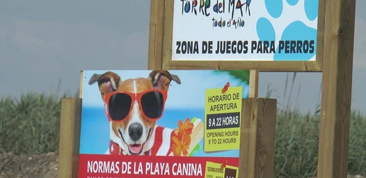 Playas caninas en Málaga