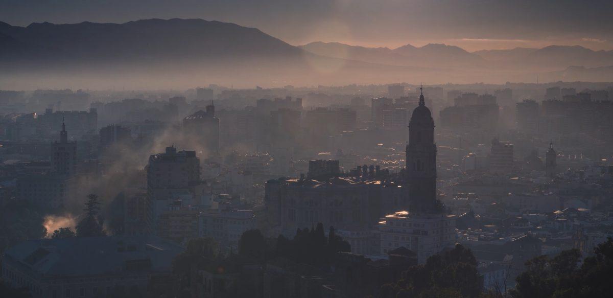 Taró en Málaga